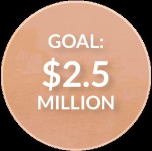 emm-goal